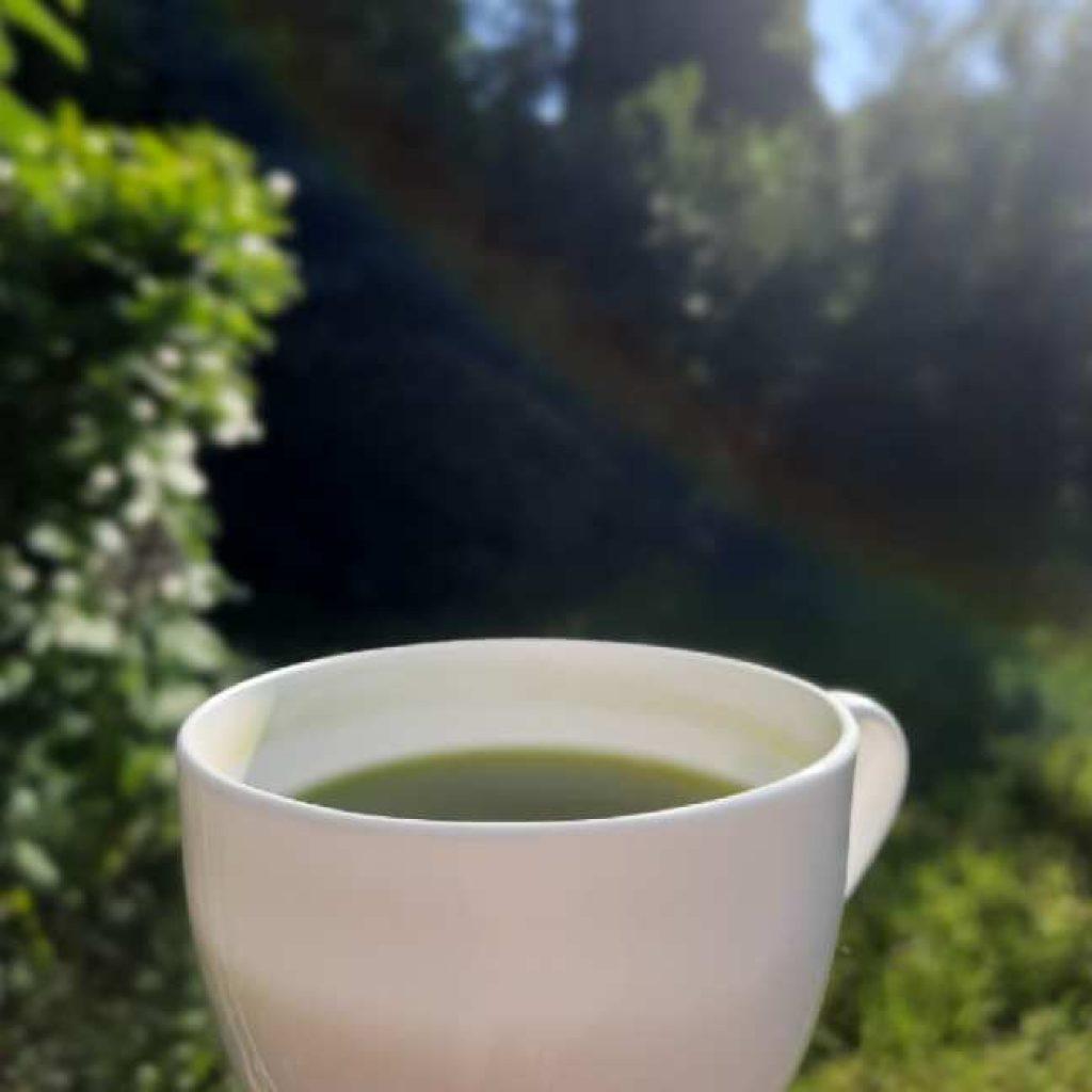 Gyokuro Tee in der Natur
